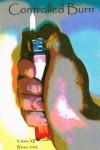 2006-controlled-burn